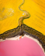 Pink Lake - Australia - Drone photo