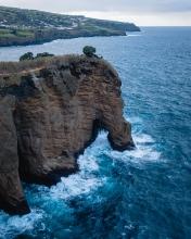 Elephant  - Azores (Portugal)