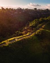 Campuhan Ridge Walk - Bali - Indonesia