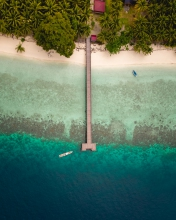 Eco lodge - Indonesia