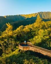 Takamaka viewpoint - La Réunion (France) - Drone photo