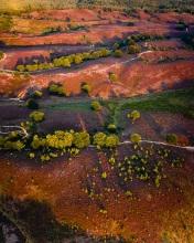 Posbank  - The Netherlands - Drone photo