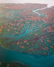 Verdronken land van Saeftinghe - The Netherlands - Drone photo