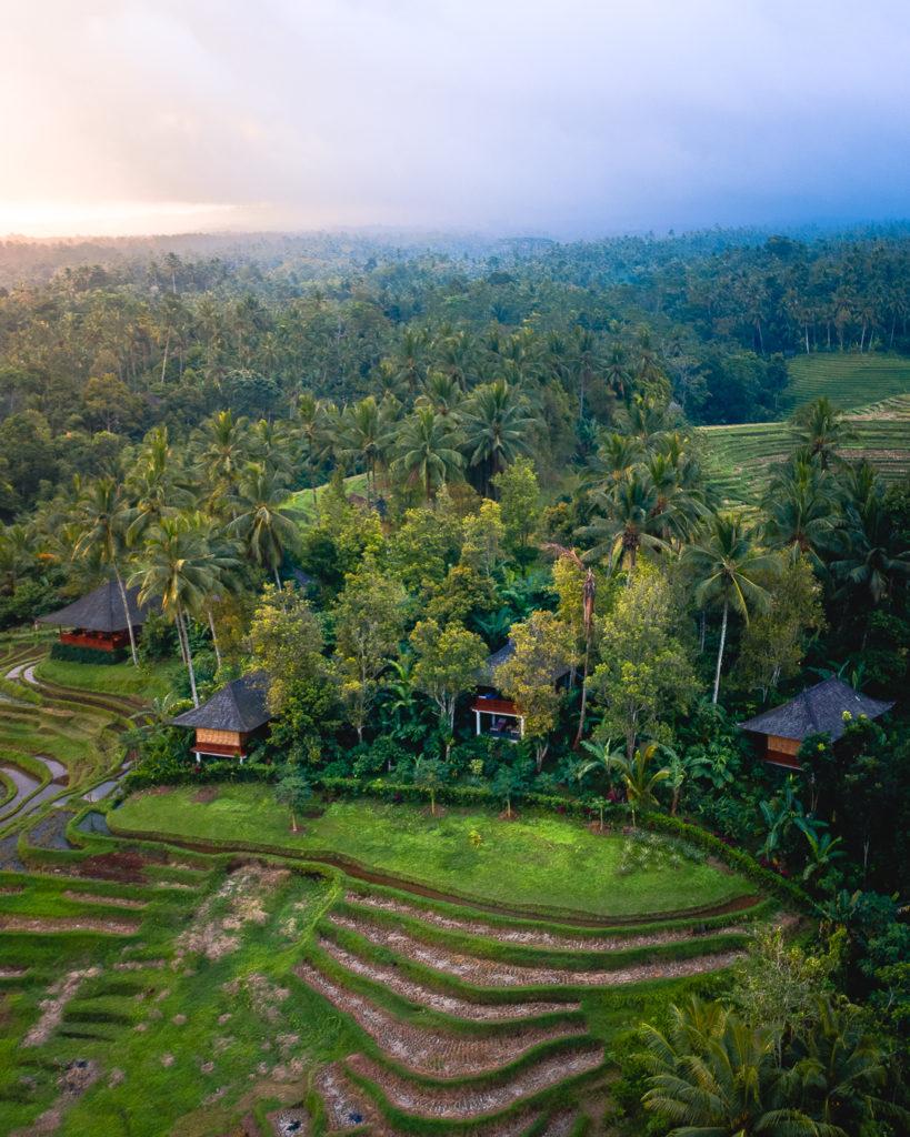Real estate photo: Clove Tree Hill - Bali